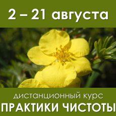 """2-21 августа дистанционный курс """"Практики чистоты"""""""
